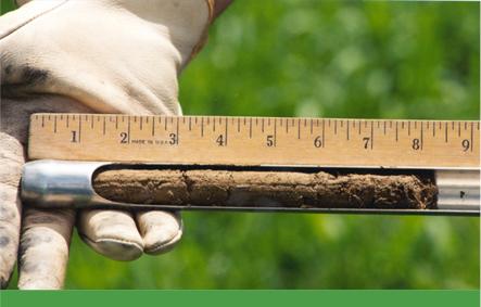 Soil-Testing_10
