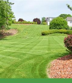 lawn-care_09